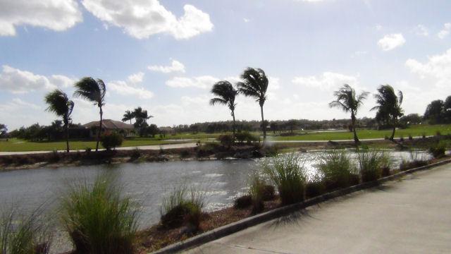 Royal Palm Drive Marco Island